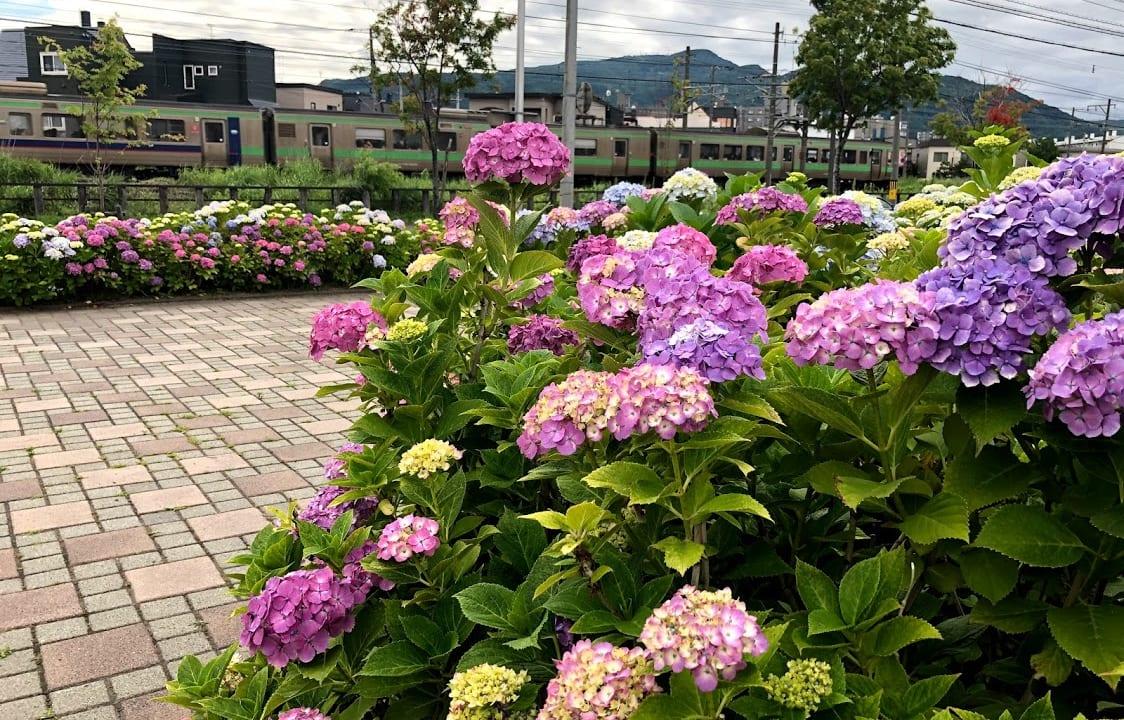 発寒中央駅そば春日緑地