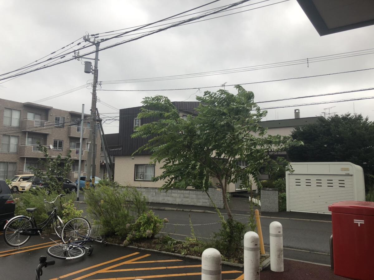 札幌 台風