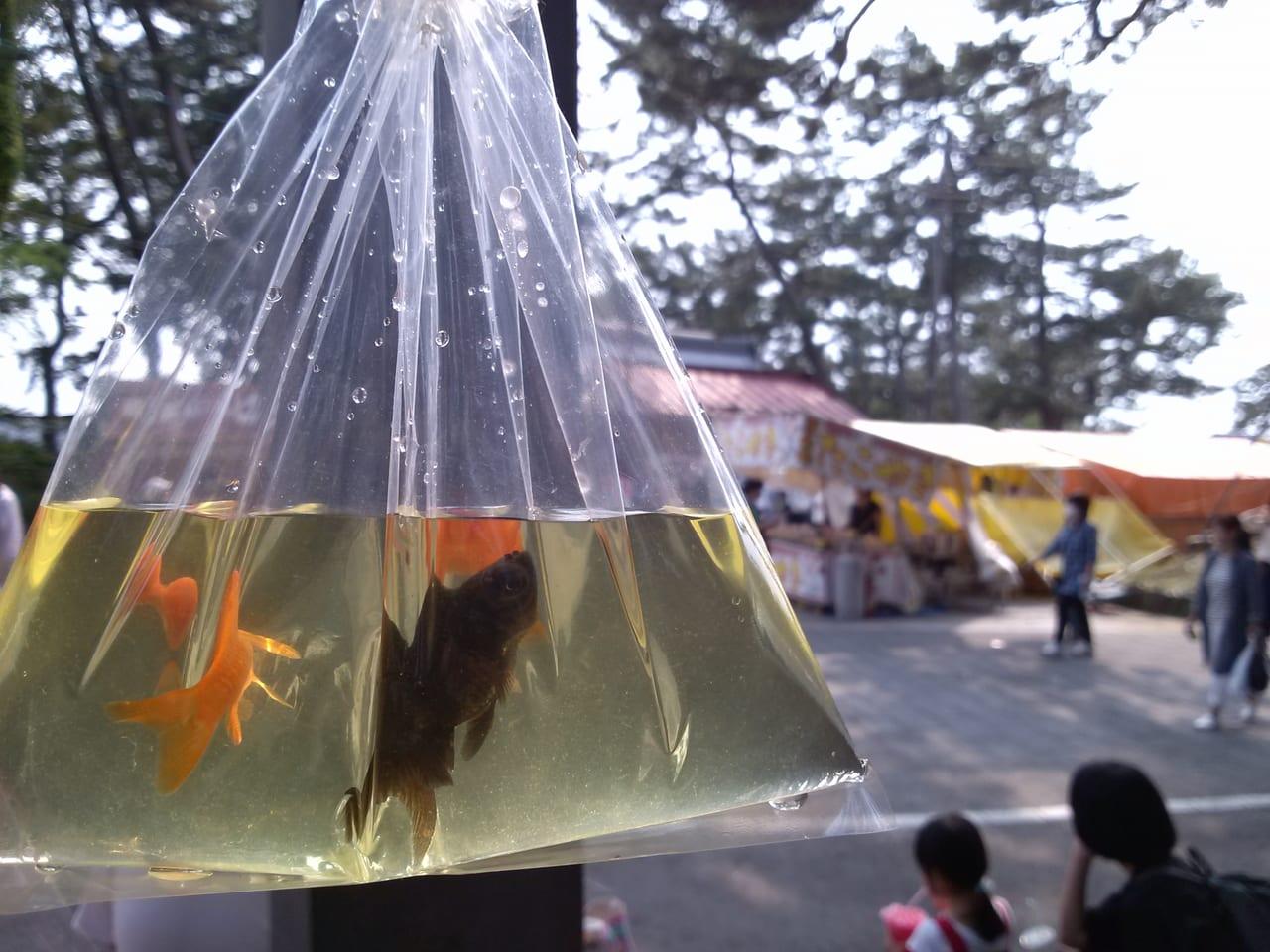 上手稲神社 例大祭