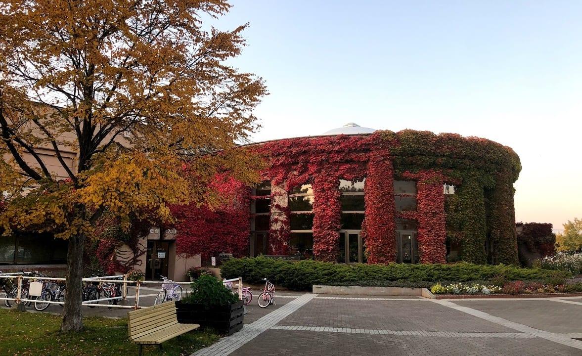 農試公園 ツインキャップ 紅葉