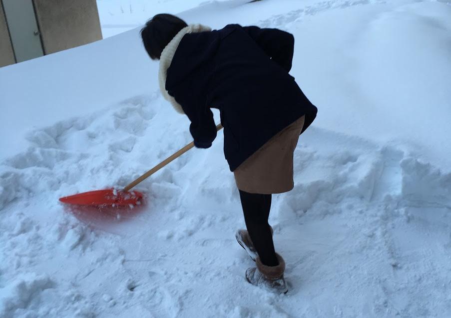 雪かき 札幌