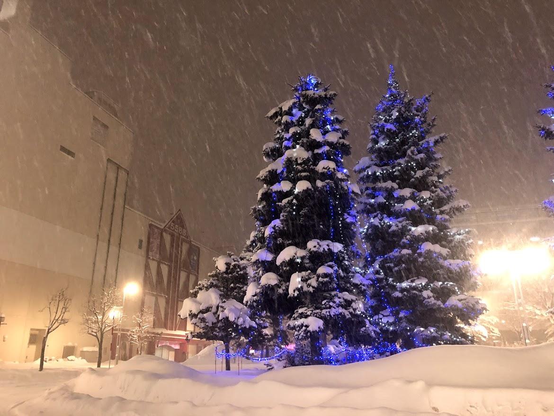 札幌 大雪